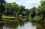 聖詹姆士公園,水鳥橫行的地方