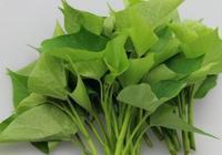 番薯葉可以降血糖嗎 番薯葉和紅薯葉的區別是什麼