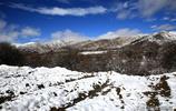四川省阿壩州紅原縣:冬季的美麗雪景