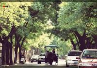 有沒有天津的朋友,五一想自駕游去天津看看海,哪裡比較好?有什麼需要注意的,萬分感謝?