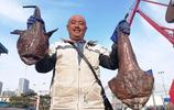 積米崖漁港大部分漁船還沒出海 小漁船小海海鮮小編帶你看