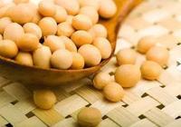 國產大豆出現短缺,2017年種大豆就對了!