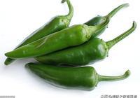 辣椒炒肉,好吃又不貴,每家每戶都會做!