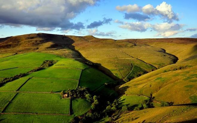 攝影:綠色養眼的田野