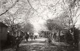 1870 -1890年明治維新之後的日本影像
