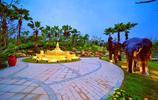 一個新的里程碑在南寧花園博覽會公園