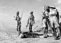 突擊隊員暗夜滲透 衝鋒槍意外走火3名隊友被撂倒 竟導致全軍覆沒