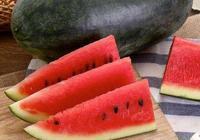 有什麼合適的西瓜品種適合河南南陽種植?