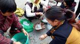 """農村大媽市場上做的""""吃香""""的小生意 20元一斤引市民搶購"""