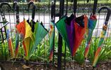 30萬共享雨傘有借無還,本以為佔了便宜,殊不知創始人樂開了花