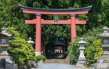 """日本最""""不作為""""神社:沒有成功壓制富士山,因7株千年雪松聞名"""
