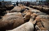 不到喀什不算來過新疆,不到牛羊大巴扎不算真正感受過西域風情