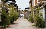 陝西渭南:初夏的華州區竹溪裡景區圖紀 宋渭濤 攝影