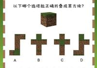 我的世界:以下哪個圖能摺疊成草方塊?萌新:這5題我一個都不會