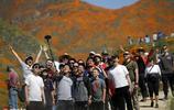一切為了拍照!加州罌粟花海被炒成網紅景點被迫關閉