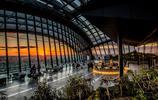 李錦記耗油在倫敦消費115億元購買建築,打破英國消費記錄