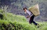 10張農活圖:勾起了70 80後童年滿滿的回憶,你又幹過幾樣農活?