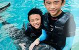 張柏芝晒倆兒子與海豚合照,一個調皮可愛一個帥氣,像極了謝霆鋒