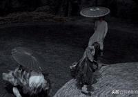 黑澤明的《影武者》,的確比張藝謀的《影》水平高,主要因為劇情