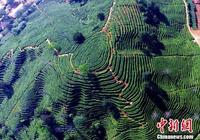 武夷山:美國CNN評選40箇中國最美地方之一