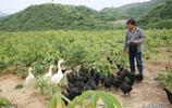 他大學畢業後北京工作年薪50萬,但他卻帶著家人回到家鄉搞觀光園