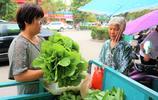 農村最常見的一種野菜,城裡售價每斤8元,你吃過嗎?