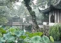 韓國人來中國旅遊!最喜歡帶什麼禮物回韓國?說出來你可能不敢信