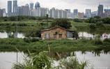 從城市邊界看深圳與香港:一邊田園清淨,一邊城市繁華