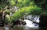 贛州風景:贛州丫山森林公園 風景