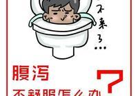 腹瀉怎麼辦?探討益生菌改善常見腹瀉