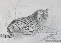 虎食兒的故事