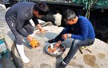 實拍 青島漁港 職業漁民的早餐 蟹子海鮮隨便吃 月薪過萬很辛苦