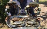 看印度人如何糟蹋螃蟹,沒有蟹黃的螃蟹不是好螃蟹