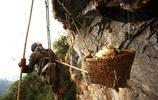 實拍喜馬拉雅山下瀕危消失的採蜜人,可能是他們最後一組紀實照片