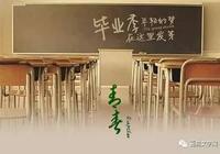 陳華|又是一年畢業季