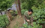 陝西62歲農村大叔吃喝不愁也不缺錢,獨自居住在深山,靠電視解悶