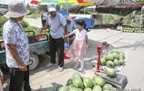 37度高溫,魯北農村遇乾旱,西瓜賣5毛一斤,大爺說不掙錢