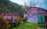 古樸的百年小山村,房子畫了3D圖案後成為網紅村,你覺得好看嗎?