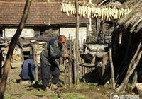 農村高齡補貼每月100、150、1000元給80、90、100歲以上的老人,你怎麼看?