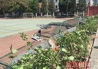 中國音樂學院附屬北京實驗學校圍欄倒地 28根磚柱斷裂