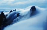 遊黃山,賞奇鬆怪石