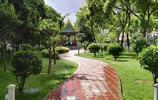 蘭州西固這個佔地面積最大的小遊園為廣大市民提供了另一種生活