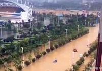 博羅:颱風天怎麼樣才算正確的打開方式?