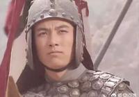 姜維執行的是諸葛亮的北伐國策,為什麼諸葛瞻還要反對姜維?