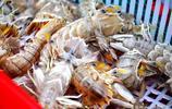 """早市海鮮攤位上 """"黃金半小時"""" 皮皮蝦按筐稱 一斤20塊錢起 肥不肥回家舌尖上品嚐"""