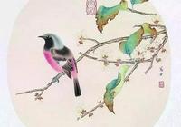 好漂亮的一組工筆花鳥,太美啦!