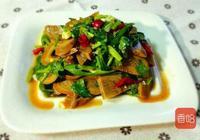 這菜一天不吃就饞,2塊錢一斤,比蔬菜營養,比肉好吃,特美味
