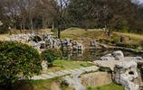 百年前的萬國公墓 如今成為青島婚紗攝影勝地