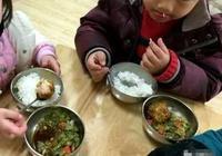 幼兒園老師發午餐照,寫到:如果家長不攪和,孩子根本就不挑食!