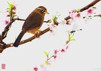 朱自清散文,春天就這麼來了